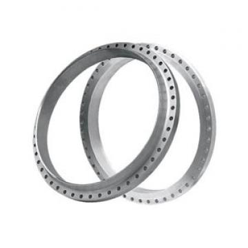 Rothe Erde Slewing Ring Bearing Ungeared with Single Row Balls (230.21.0875.013 Typ 21/950.0)