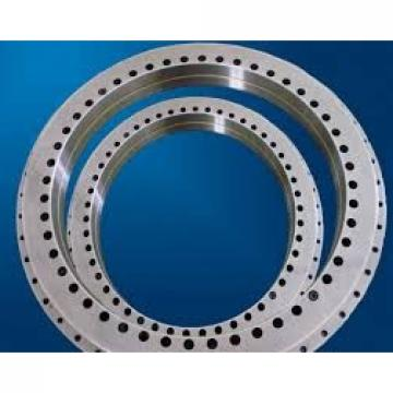 Phosphating and Epoxy Painting Crossed Roller Slewing Bearing Rh221007-1455